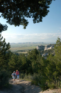 Wildflower Walk at Wildcat Hills @ Wildcat Hills Nature Center  | Gering | Nebraska | United States